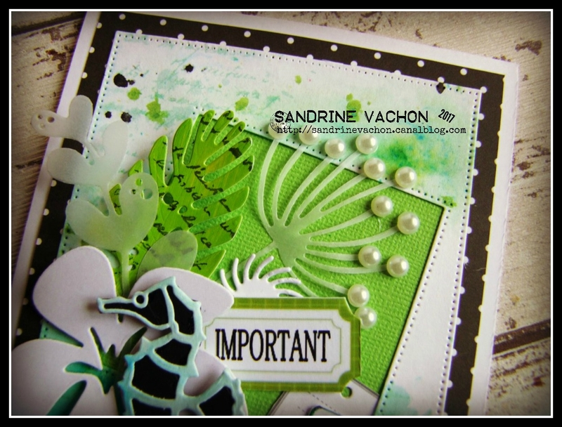 Sandrine VACHON défi 496 (4)