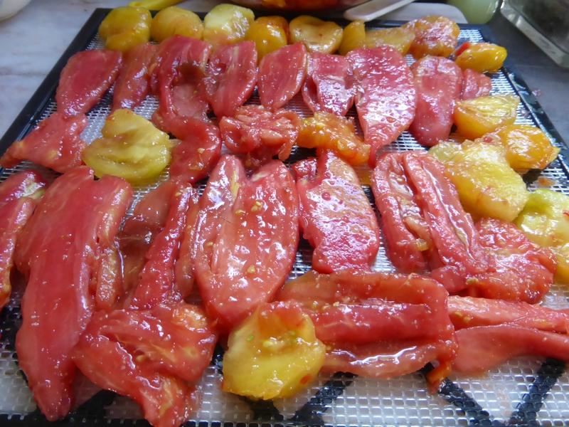 22-tomates séchées (2)