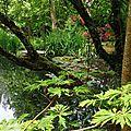 Jardin Poterie Hillen 1206167