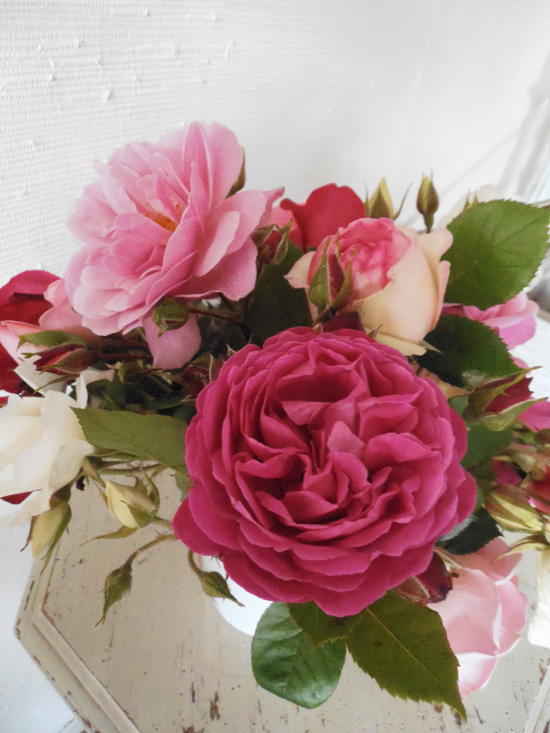 roses_suite