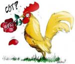 blog-coq-rugby