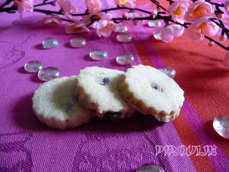 biscuits_cranberries__4_