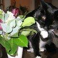 Comme ma maman, j'aime les fleurs!