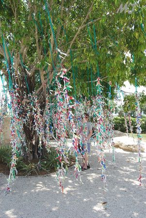 WISH TREE BIS