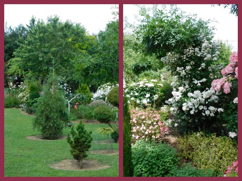 Jardin des Duo 03-0611