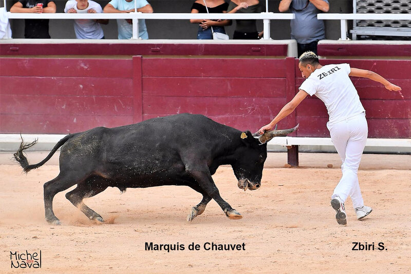 ISTRES 07