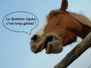 Le dentiste, c'est cool