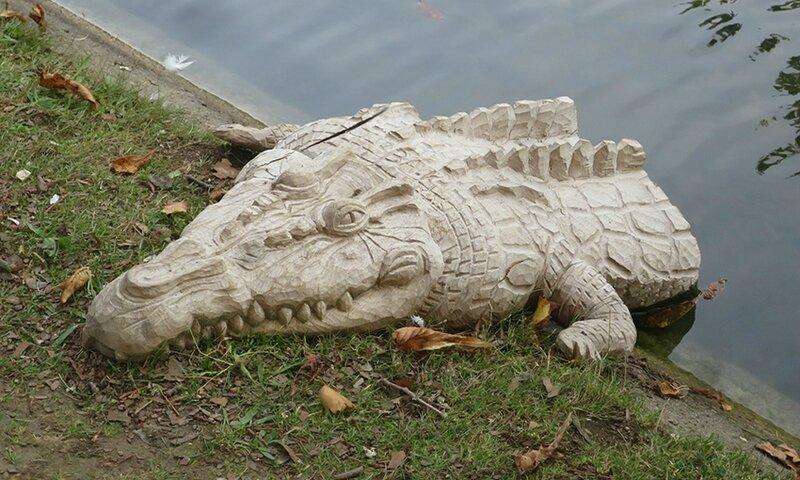 croc c