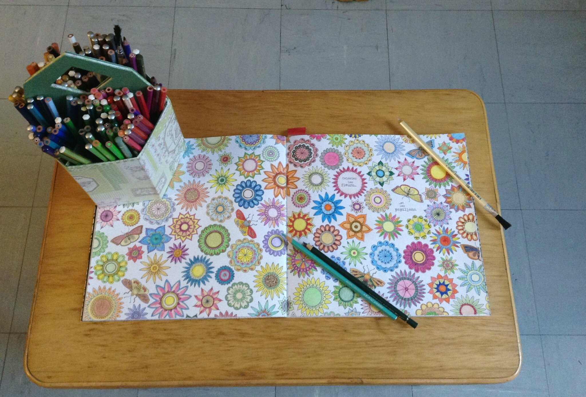 Un kit pour carnet de coloriage ateliers de molly for O jardin secret suresnes