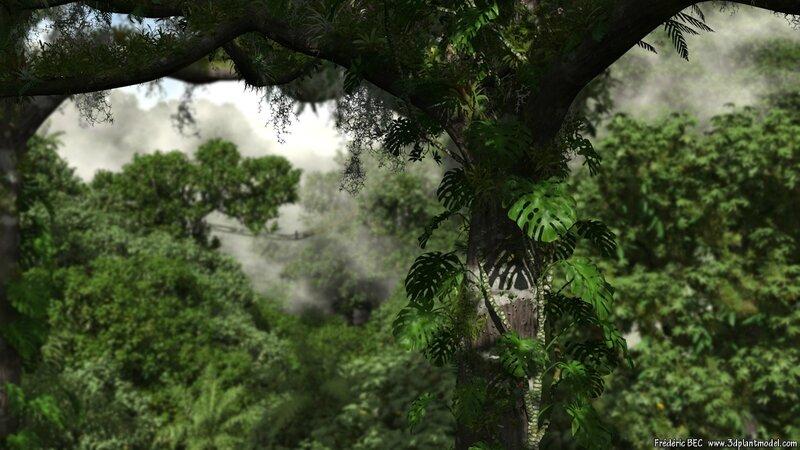 04 Ceiba pentandra kapok HD tropical 3d tree plant model factory image 3