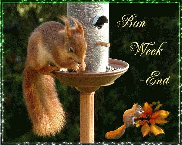 gif bon week end