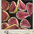 Que faire avec des figues (fraîches) ? des idées