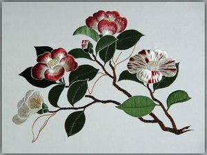 BearCamellias