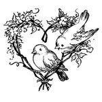 Coeur-d-oiseaux70864510_p