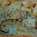 Tigres et chaton