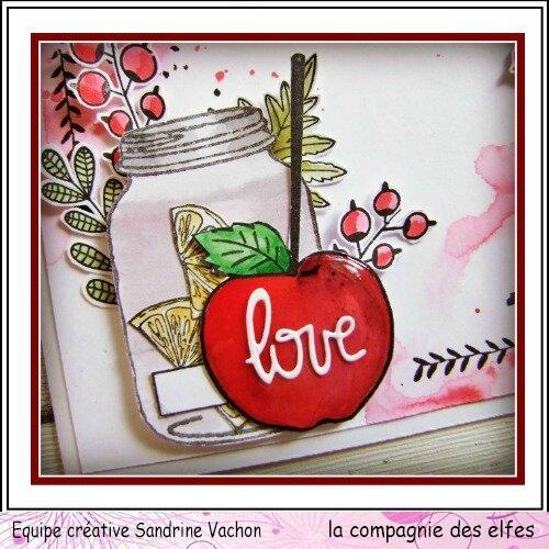 Sandrine VACHON fév dt LCDE (2)
