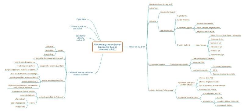 préciser les objectifs théra C_Page-1