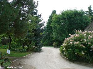 Jardin_Plante_d_or_