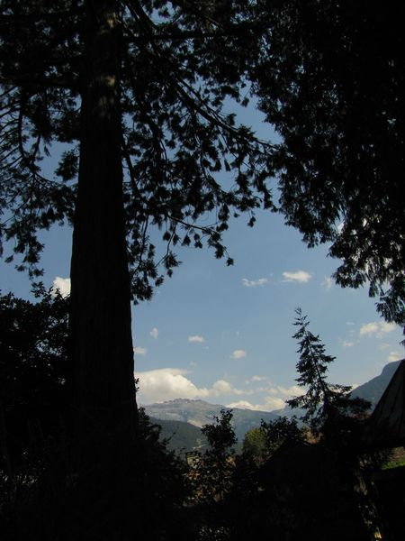 jardin alpin39