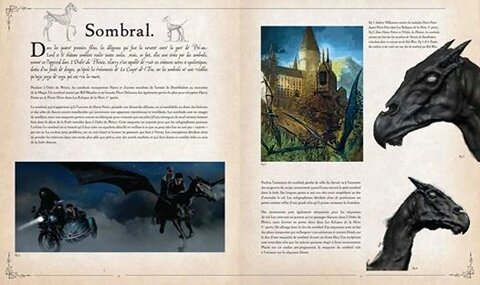 Grand_livre-Harry_potter_483