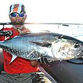 pêche aux thons rouge (77)