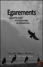 egarements-ebook-couverture