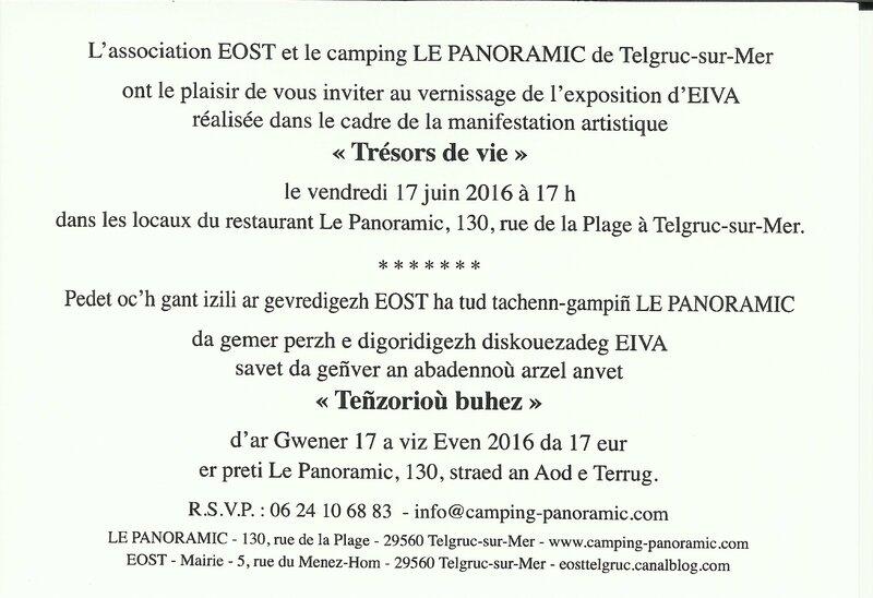 invitation vernissage expo gens de presqu'île Eiva - 2016