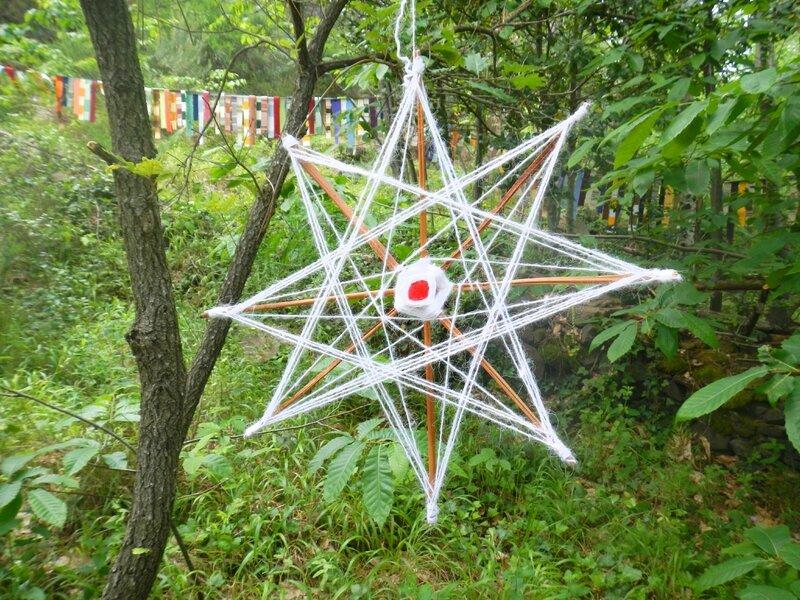 étoile blanche sur tiges de fougères yurtao