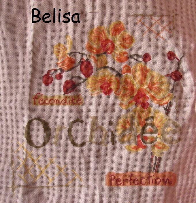 belisa 13