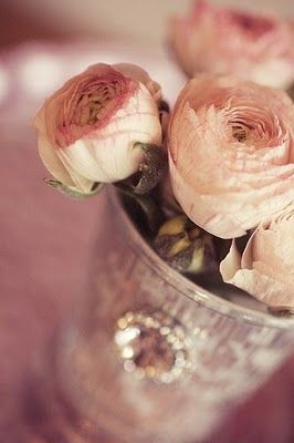wedding_ranunculus_by_emily_quinton