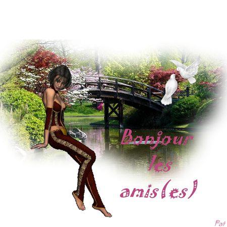 bonjour_les_amis_es__2