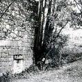 moulin en ruine, mur, bief et ouverture pour l'arbre, 1986