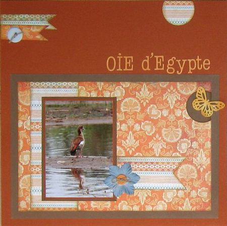 oie-d-egypte-