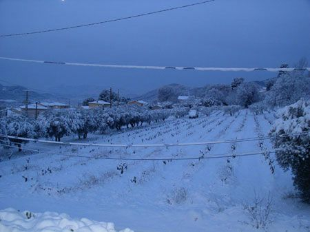 neige110212_1