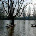 A Noyen-sur-Sarthe la rivière sort de son lit…