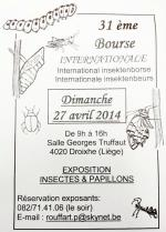 Affiche bourse insectes et papillons Droixhe