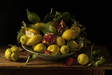 Paulette_Tavormina_Lemons_pomegranates_After_H