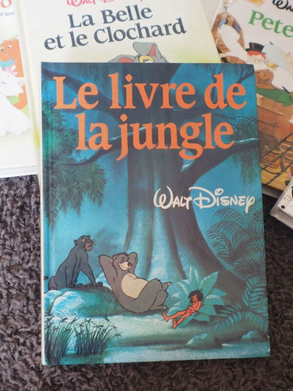 8-collection-livre-walt-disney-ma-rue-bric-a-brac