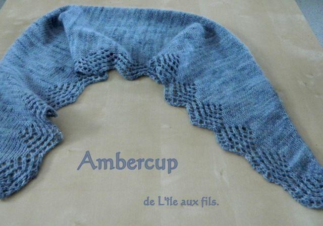AMBERCUP 009