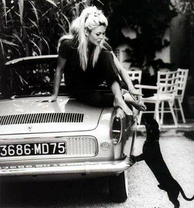 bardot_floride_2