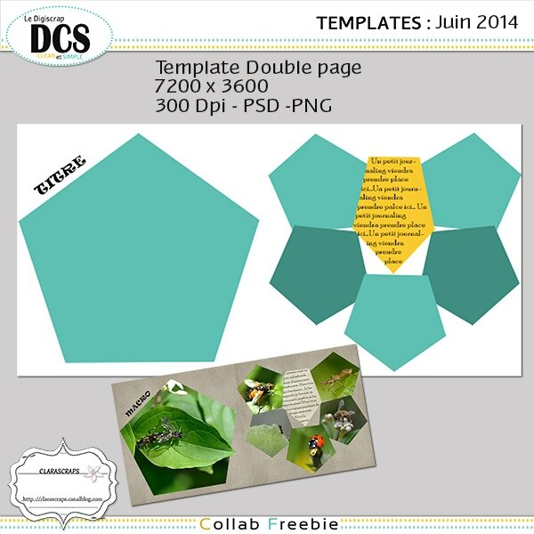 preview dp June dcs
