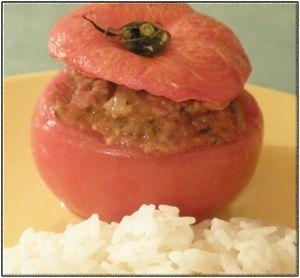 tomates_farcies_1