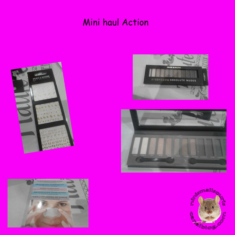 mini_haul_action_2015