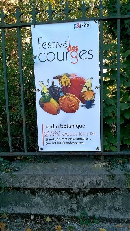 FESTIVAL COURGES