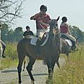 Jeux équestres manchots 2013 (92)