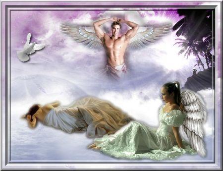 les-anges-image