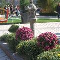 Nancy jardins éphémères 016