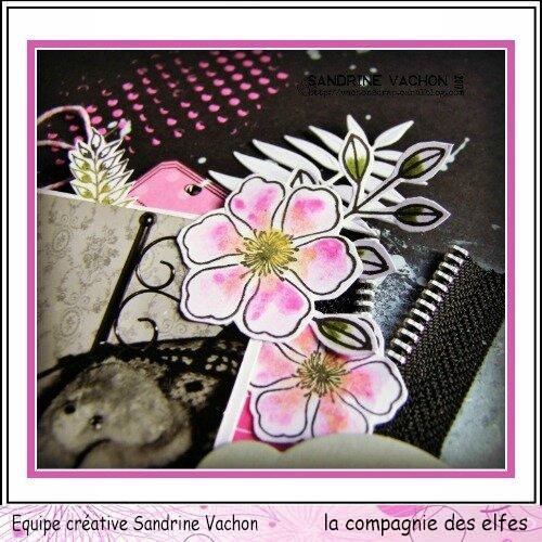 Sandrine VACHON page AMIS dt LCDE déc (3)