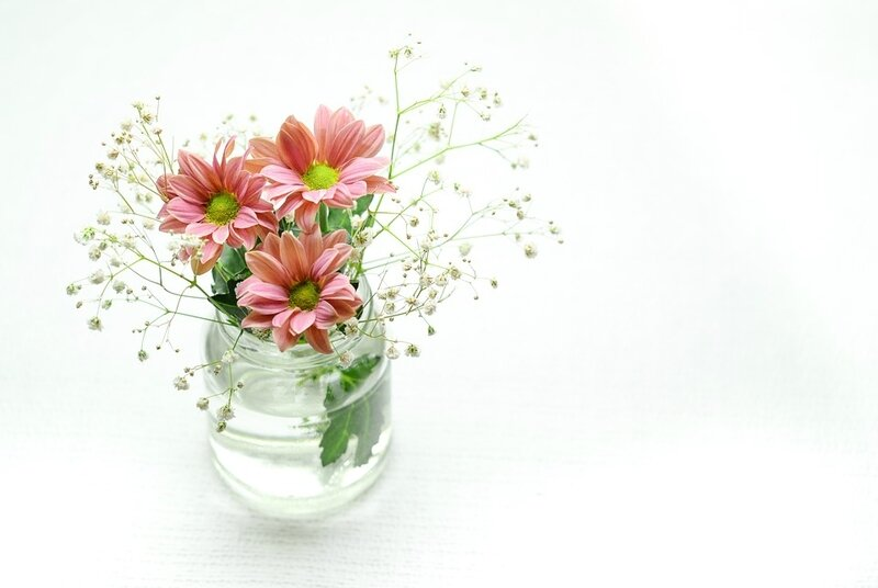 pink-2609210_960_720