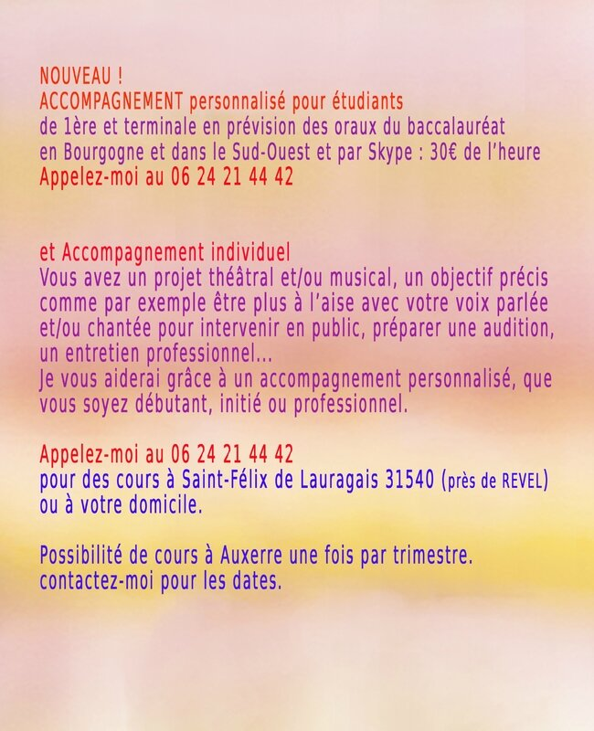 accompagnement individuels 2017 copie